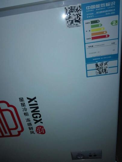 星星(XINGX)BD/BC-305EH 305升 商用单温冰柜 蝴蝶门 玻璃门 侧掀门 单箱变温冰箱 冷藏冷冻转换冷柜 晒单图