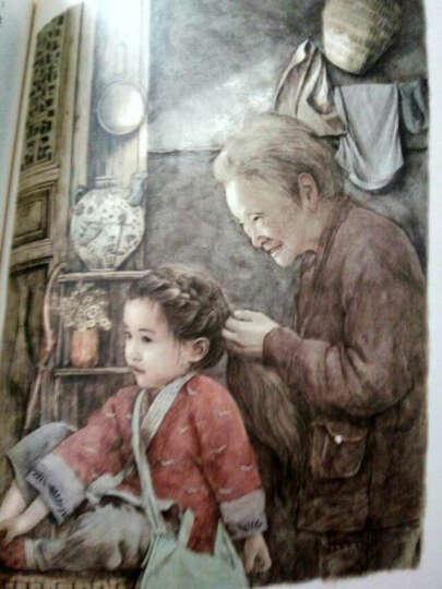 曹文轩经典作品: 草房子(世界著名插画家插图版) 晒单图