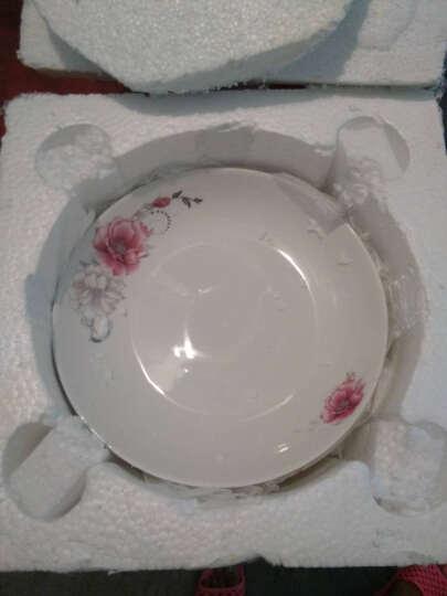 泥巴佬 陶瓷碗碟套装餐具套装鱼盘汤碗菜碟小勺盘子饭碗 陶瓷餐具的数量可以随心所欲的选择购买 金枝玉叶8寸菜碟1个 晒单图