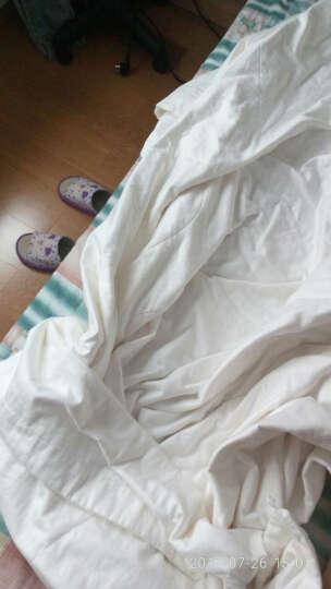 多喜爱家纺 全桑蚕丝被 全棉面料桑蚕丝填充 夏凉被空调被被子被芯 品质床品礼盒装 1.5米床203X229cm 晒单图