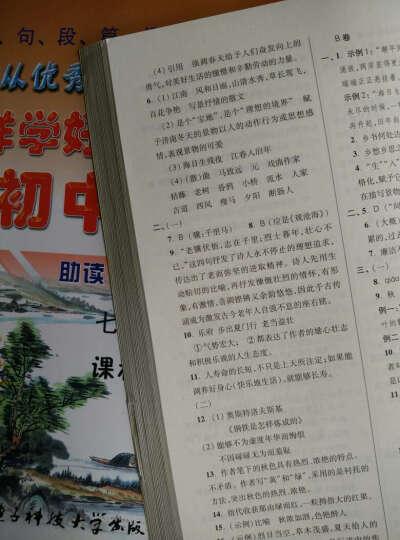 怎样学好 初中语文 九年级 上册 初三人教版 晒单图