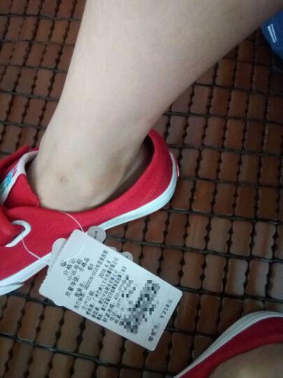 海绵宝宝童鞋儿童帆布鞋男女童春季小白鞋亲子鞋运动鞋休闲鞋学生球鞋板鞋宝宝鞋 白色 25/175码 晒单图