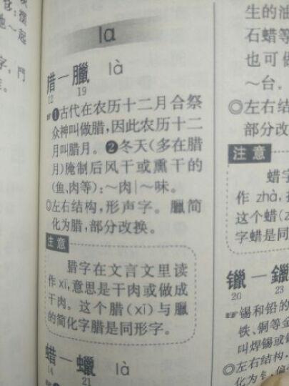 现代汉语小词典(修订版) 晒单图
