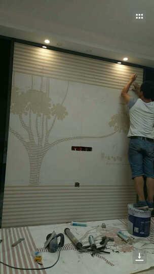 现代简约电视背景墙瓷砖客厅3D微晶石瓷砖背景墙影视墙艺术边框 高温烧微晶石+幻彩0.1/平 晒单图