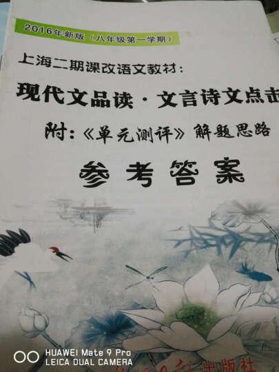 2018新版现代文品读文言诗文点击八年级第一学期8年级上赠单元测评试卷+答案3本套上海中学教辅光明 晒单图