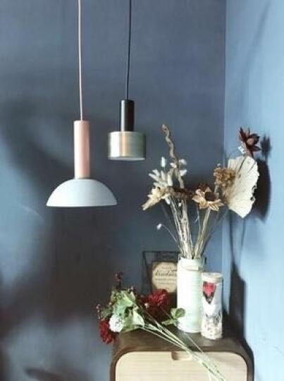 光团精工 费尔姆吊灯 北欧丹麦设计师餐厅吧台卧室床头灯创意个性loft单头马卡龙小吊灯 短灯头哑光黑(含光源) 晒单图