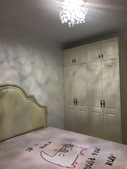 尚层(SanCun) 灯具 客厅 简约现代大气客厅灯家用led吸顶灯创意新款卧室水晶灯全屋灯具套餐 简约款-直径52cm-暖光24瓦适合6-12平 晒单图