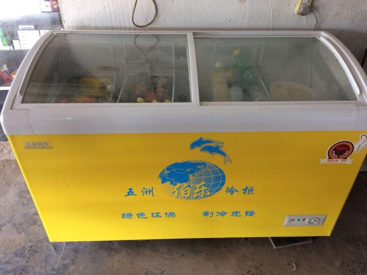 五洲伯乐WUZHOUBOLE 冰柜商用圆弧玻璃雪糕冰淇淋饮料展示柜冷藏冷冻柜小冰柜SR/SF345升 晒单图