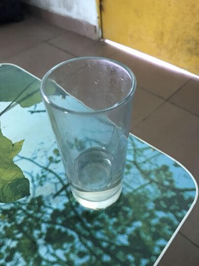 莹润 啤酒杯 直筒玻璃杯 透明水杯 茶杯 牛奶杯 果汁杯 饮水口杯 玻璃水杯 橙汁杯 单支装 其他 晒单图