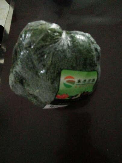 东升方圆 西兰花 约350g 新鲜蔬菜 晒单图