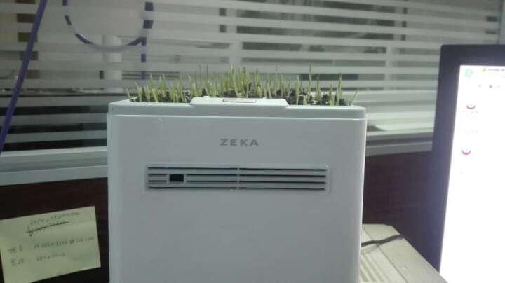 空气净化器家用除甲醛二手烟尘雾霾PM2.5加湿功能负离子小型桌面清新器 绿植强效离子版(MD05-B) 晒单图