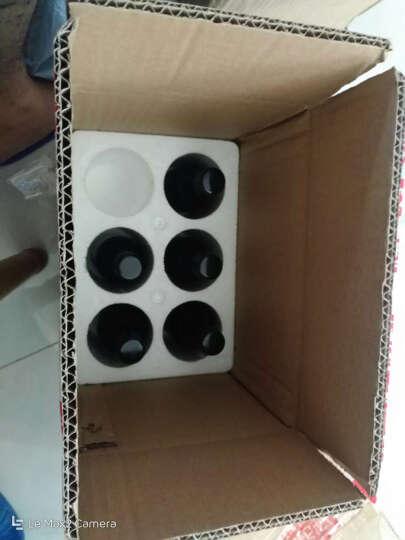 鲸鱼传说 智利原瓶进口小瓶红酒 小蓝鲸梅洛干红葡萄酒整箱礼盒装6*187ml 晒单图