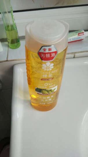 蜂花(BEE&FLOWER) 蜂花洗发水无硅油健发洗发露 男士女士含啤酒花生姜成分洗护套装 500ml*2瓶 晒单图