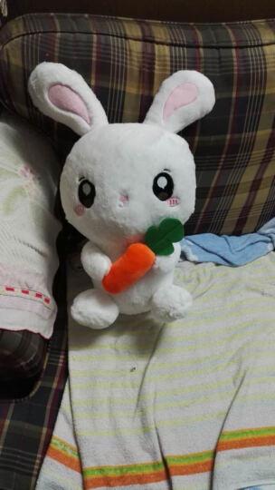 小笨熊 兔子公仔毛绒玩具兔抱枕流氓兔小白兔公仔安抚兔大号兔子可爱儿童睡觉布娃娃玩偶生日礼物 白色抱萝卜 40厘米 晒单图