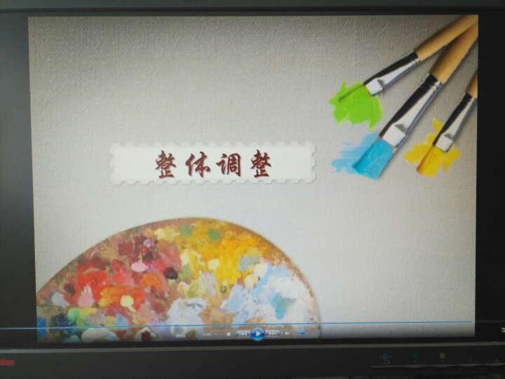 油画入门基础教程(水晶版 DVD) 晒单图