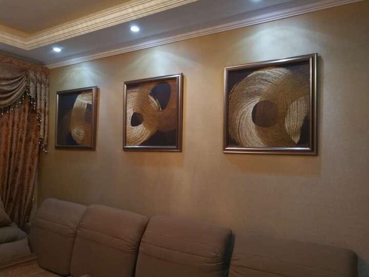 米罗映画  客厅装饰画北欧麋鹿壁画沙发背景墙三联挂画餐厅玄关卧室有框画发财鹿 花开富贵 50*70 黑色框 晒单图