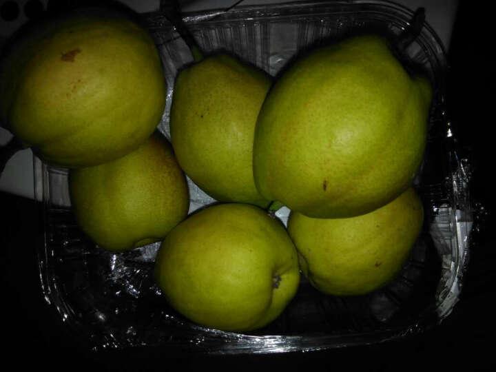 美果汇新疆库尔勒香梨2.25kg装单果约130g 新鲜水果礼盒 晒单图