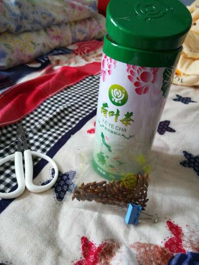 【买1送1】荷叶茶 草本健康干荷叶 贴水荷叶 罐装花草茶 晒单图
