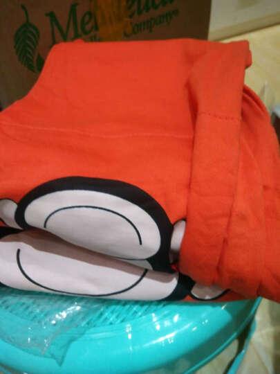 BAILIWEINI2018秋季新款 男女童时尚运动套装长袖卫衣裤子休闲套装 儿童套装 卡通小猪粉色 120适合身高110cm 晒单图
