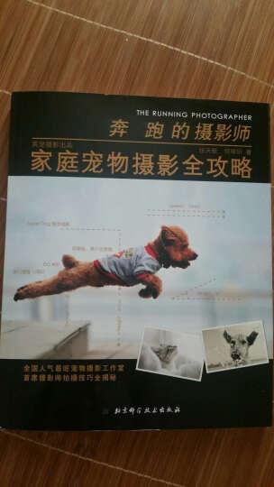 奔跑的摄影师 家庭宠物摄影全攻略 张天航 艺术 书籍 晒单图