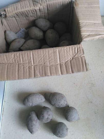 味道网 湖北宜城将军紫薯 约7-15个 2.5kg  番薯蔬菜 晒单图