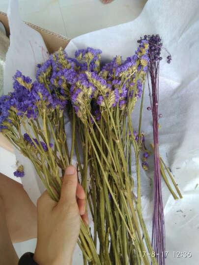 繁花故里 尤加利木棉花花束干花套装客厅装饰花瓶摆件 春浓 晒单图