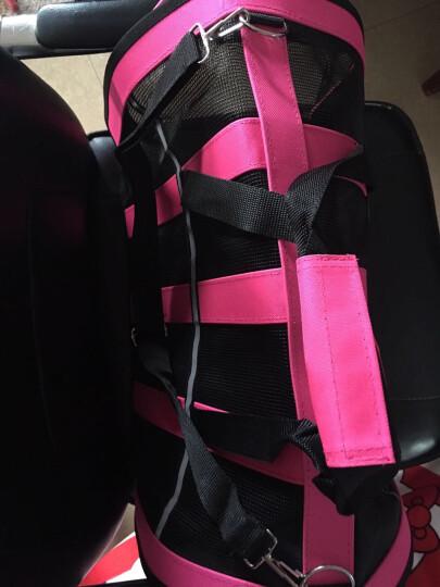 猫包狗包宠物包外出包旅行猫袋笼子狗狗背包泰迪便携带包箱包用品 俏丽粉 L号48*28*28适合8-12斤 晒单图