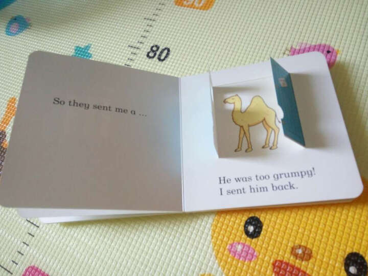 Dear Zoo: A Lift-the-Flap Book  趣味动物园立体翻翻书 英文原版 晒单图