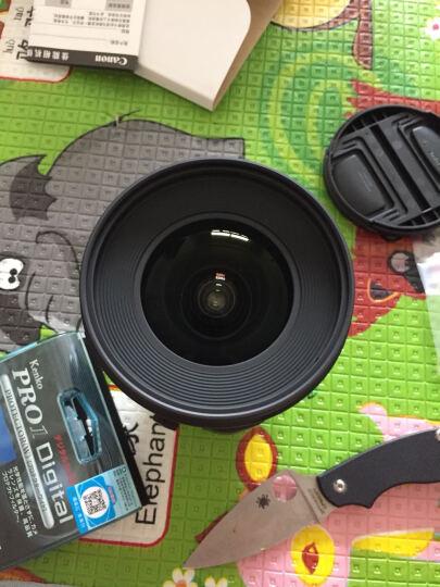 佳能(Canon)TS-E 24mm f/3.5L II 移轴镜头 晒单图