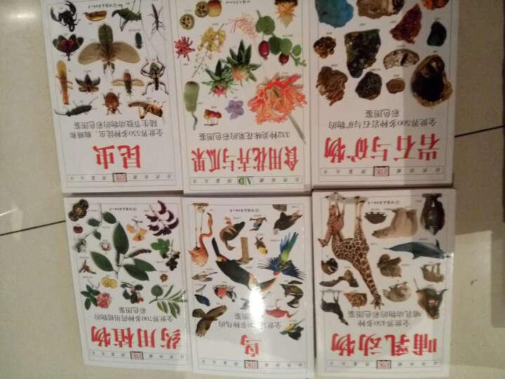 自然珍藏图鉴丛书:食用花卉与瓜果 晒单图