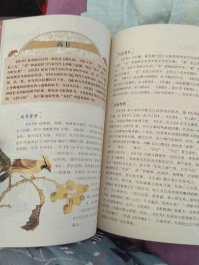 美丽国学 老子 孟子 庄子(套装共3册) 晒单图