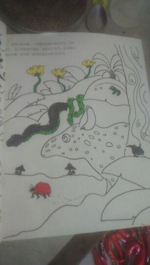 童立方·女孩的第一本创意填色书:我会画动物 晒单图