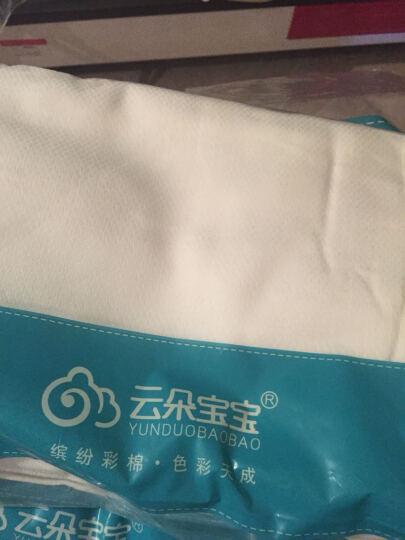 云朵宝宝(YUNDUOBAOBAO) 婴儿竹纤维纱布尿布巾 可洗新生儿尿布 20条蓝色 晒单图