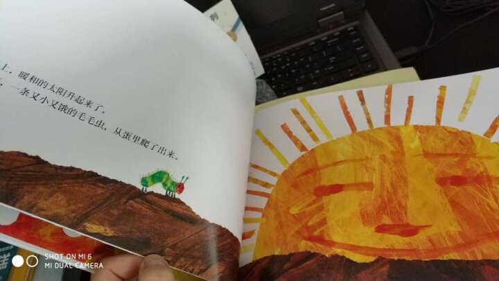 美国视觉艺术协会大奖 好饿的毛毛虫棕色的熊棕色的熊你在看什么美国教育协会纽约公共图书馆hb 晒单图