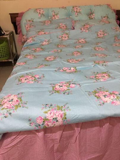 爱莱欧 全棉床罩四件套 纯棉床上用品床裙式韩版床品套件 床罩四件套-蝴蝶飞飞 1.5米床(适合200*230的被子) 晒单图