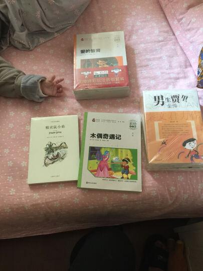 宝葫芦的秘密(彩绘注音版)/素质版·小学语文新课标必读丛书,智慧熊图书 晒单图
