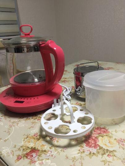 竹水溪 养生壶玻璃加厚电热水壶煮茶壶器水果茶花茶多功能养生杯电水壶 1.8L粉色养生壶(粉) 晒单图