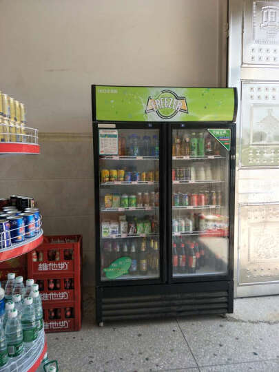 乐创(lecon)立式冰柜双门展示柜冷藏保鲜三门商用冰箱饮料超市冷柜水果厨房陈列柜凉菜点菜柜直冷风冷 双门星光银 白色门 晒单图