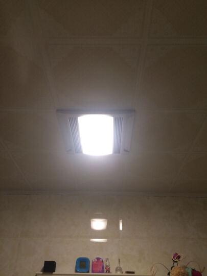 【鲁格】LED灯管h管平四4针H型节能灯管改造led光源横插灯管2g11 8瓦23厘米正白光乳白罩 晒单图