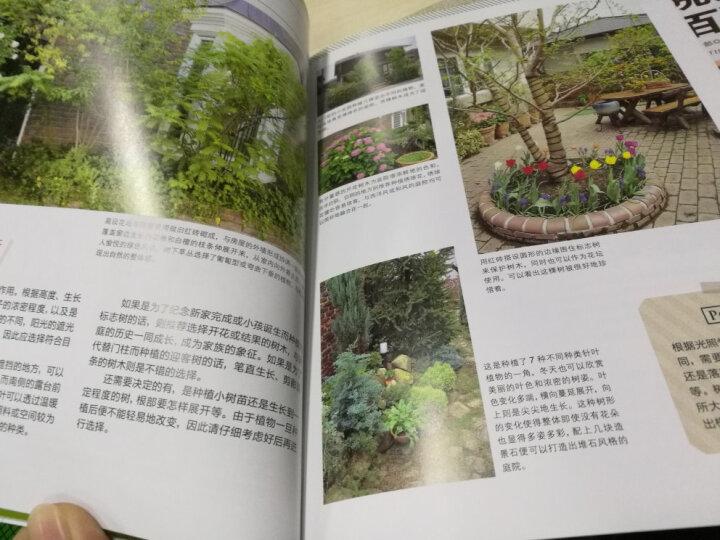 家庭园林的设计与布置 晒单图