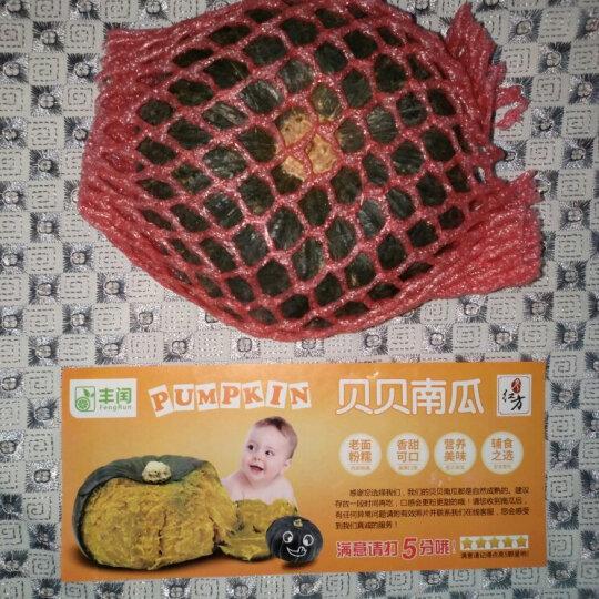 【临朐农特产馆】贝贝小南瓜 迷你青嫩南瓜板栗味窝瓜新鲜蔬菜 2.5kg 晒单图