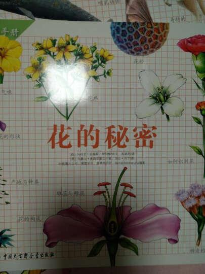 北斗童书·自然很有趣(野外探秘手册 精华版)(套装6册) 晒单图