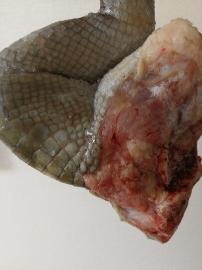 爱食派 海南鲜冻带皮鳄鱼掌 整只1500g左右 袋装 鳄鱼肉生态养殖 晒单图