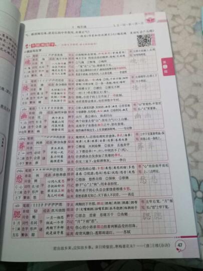 新课标小学语文词语手册:五年级上 晒单图