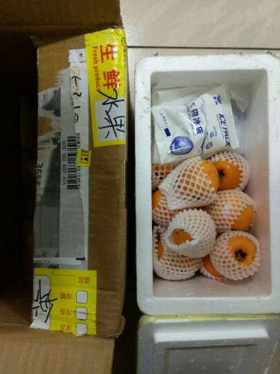【顺丰冷运】四川龙泉五星大枇杷枇杷1.5kg装 新鲜水果 晒单图
