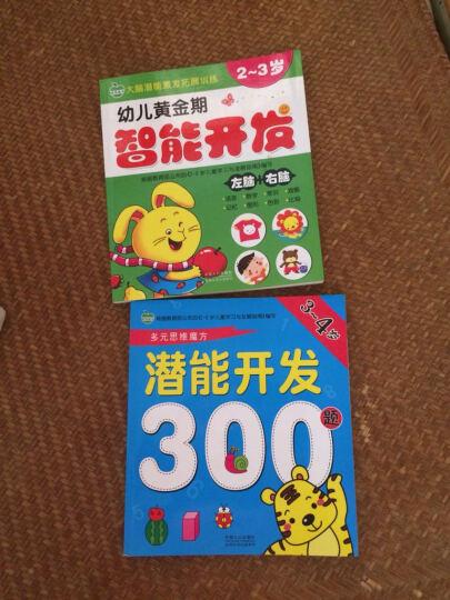 晨风童书 多元思维魔方 潜能开发500题 全脑思维智力开发 5-6岁 晒单图