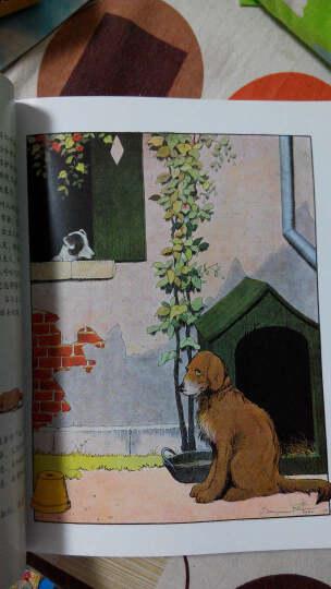 自然史:动物之歌(全彩) 晒单图