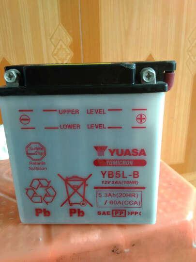 YUASA汤浅12V7AH摩托车蓄电池适用女装踏板弯梁轻骑铃木豪迈豪爵鬼火巧格迅鹰本田电瓶 YB5L-B 晒单图