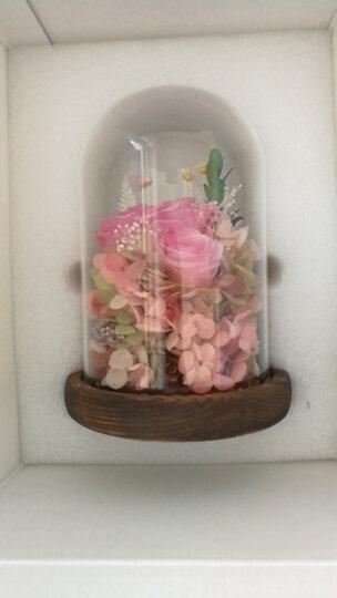 DILOVE蒂爱  进口永生花礼盒玻璃罩玫瑰花鲜花速递送女朋友老婆情人节礼物 爱如心火(灯光电池款) 晒单图