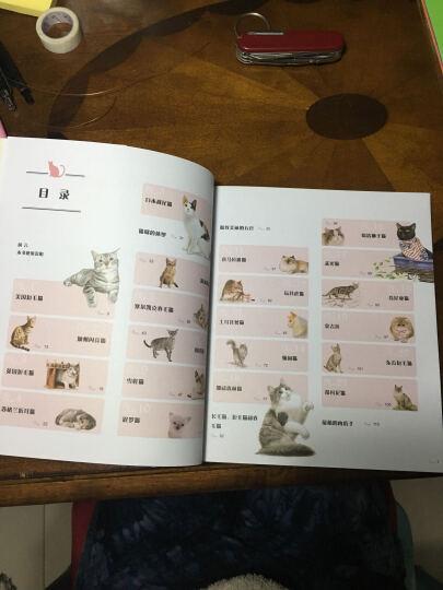 猫咪绘:33只萌猫的色铅笔图绘 晒单图